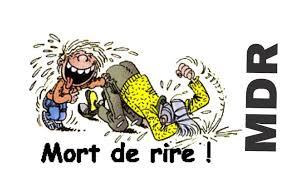 Lourdes : Les croustillantes du Conseil Municipal «Je ne sais pas mais je le dis quand même!»