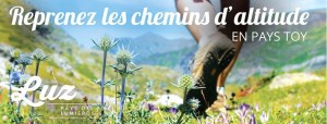 Read more about the article Reprenez les chemins d'altitude en Pays Toy