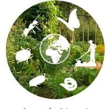 Read more about the article L'association Graine de Sénevé vous propose de préparer le repos hivernal des jardins
