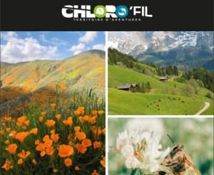 Bientôt le printemps à Chlorofil Parc