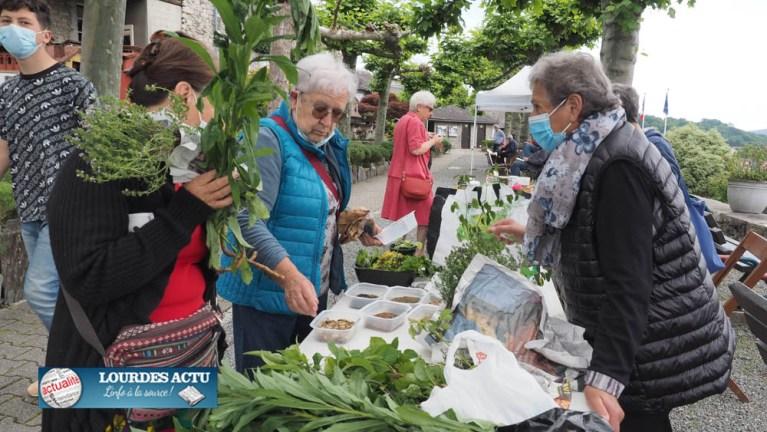 Read more about the article Lourdes : des «Rendez-vous aux jardins» fort appréciés