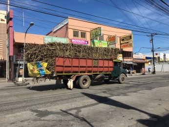 Truck loaded with lots of sugarcane
