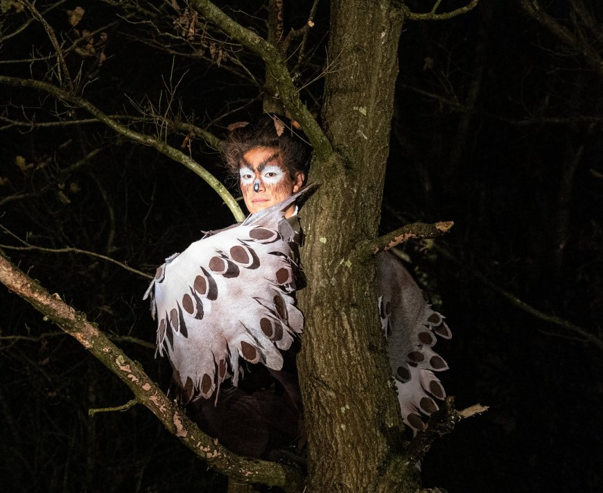 Takeshi Matsumoto as Owl in Night Tree