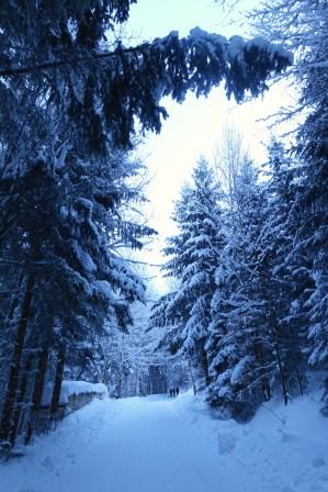 Beautiful winter scene on the ascent