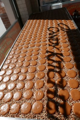 Pralines at Savannah's Candy Kitchen