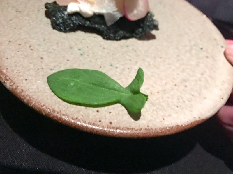 Cured Kanpachi, nori, curry