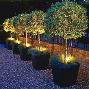 Outstanding Lighting Ideas To Light Up Your Garden With Style 13