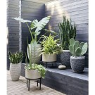 Unique Indoor Garden Design Ideas For Fresh House 53