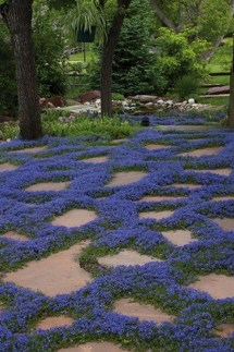 Newest Stepping Stone Pathway Ideas For Your Garden 13