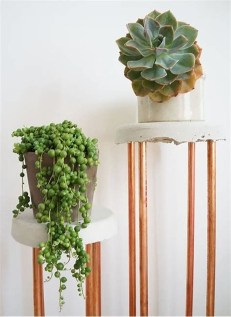 Popular Indoor Plant Stands Ideas For Fresh Home Inspiration 03