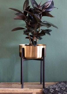 Popular Indoor Plant Stands Ideas For Fresh Home Inspiration 12