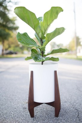 Popular Indoor Plant Stands Ideas For Fresh Home Inspiration 17