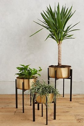 Popular Indoor Plant Stands Ideas For Fresh Home Inspiration 18