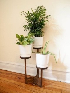 Popular Indoor Plant Stands Ideas For Fresh Home Inspiration 19