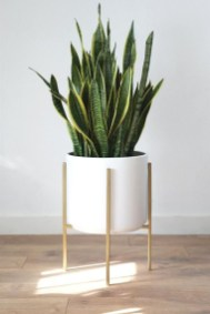 Popular Indoor Plant Stands Ideas For Fresh Home Inspiration 39