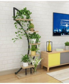 Affordable House Plants For Living Room Decoration 01