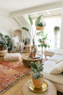 Affordable House Plants For Living Room Decoration 29