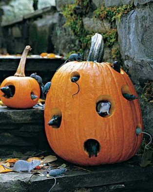 Spooktacular Halloween Outdoor Decoration To Terrify People 36