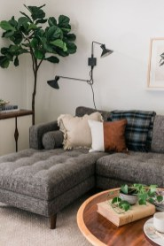Pretty House Plants Ideas For Living Room Decoration 12