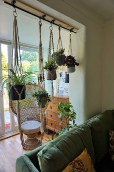 Pretty House Plants Ideas For Living Room Decoration 45