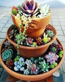 Awesome Succulent Garden Ideas In Your Backyard 28
