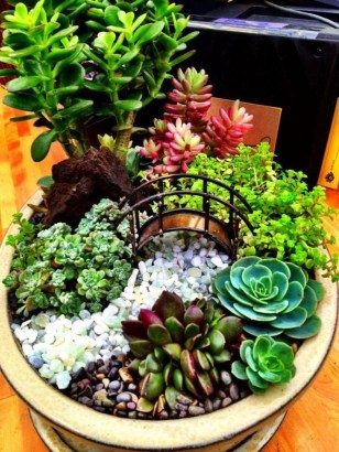 Awesome Succulent Garden Ideas In Your Backyard 34