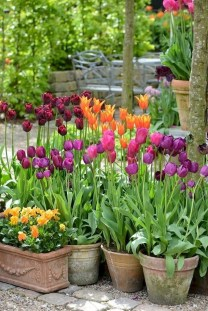 Fascinating Cottage Garden Ideas To Create Cozy Private Spot 03