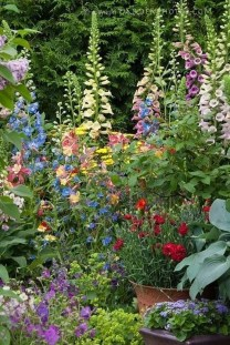 Fascinating Cottage Garden Ideas To Create Cozy Private Spot 31