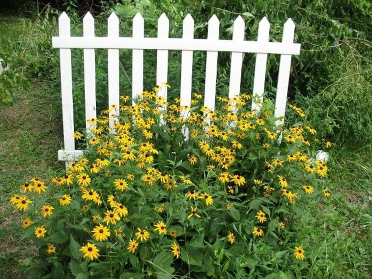 Awesome Farmhouse Garden Fence For Winter To Spring 13