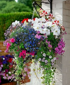 Lovely Hanging Flower To Beautify Your Small Garden In Summer 03