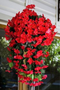 Lovely Hanging Flower To Beautify Your Small Garden In Summer 11