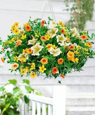 Lovely Hanging Flower To Beautify Your Small Garden In Summer 14