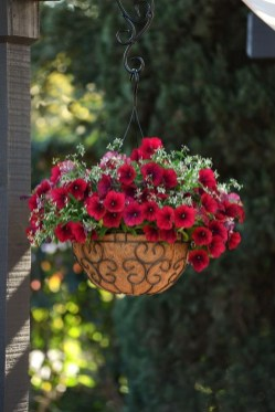 Lovely Hanging Flower To Beautify Your Small Garden In Summer 15