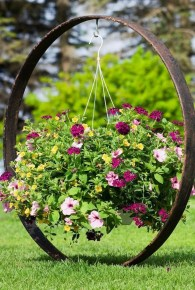 Lovely Hanging Flower To Beautify Your Small Garden In Summer 18