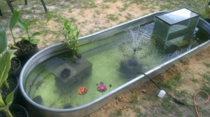 Adorable Fish Ponds Inspirations For Your Home 08
