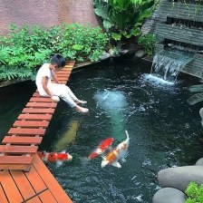 Adorable Fish Ponds Inspirations For Your Home 11