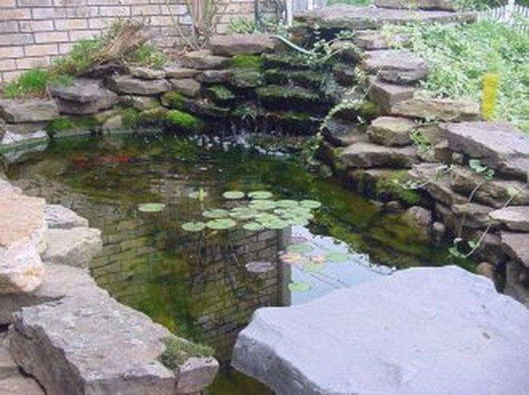 Adorable Fish Ponds Inspirations For Your Home 24