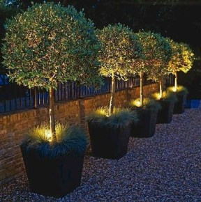 Creative Backyard Lighting Design Ideas That You Should Try 43