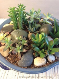 Elegant Indoor Rock Garden Ideas That Can Enhance Your Home Style 42