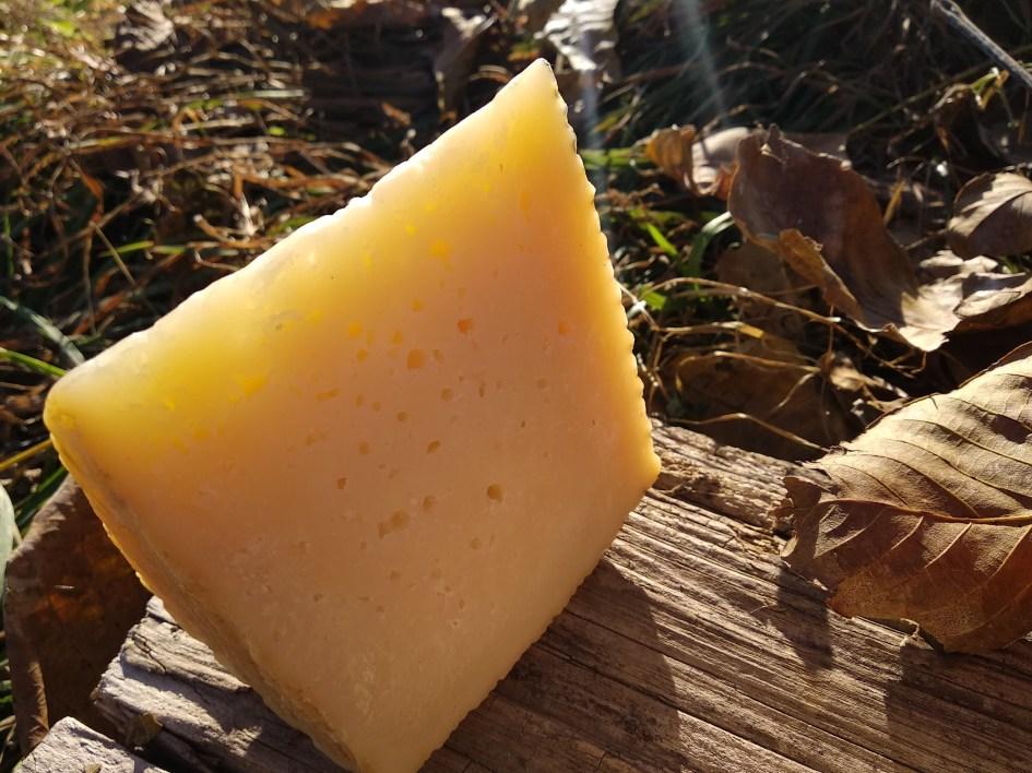 Испанский сыр «Манчего»