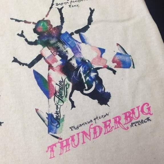 thunderbug close up mp
