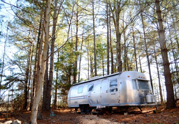 Airstream in the woods