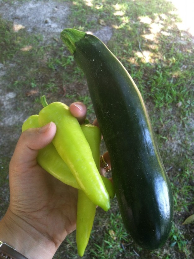 banana peppers and zucchini