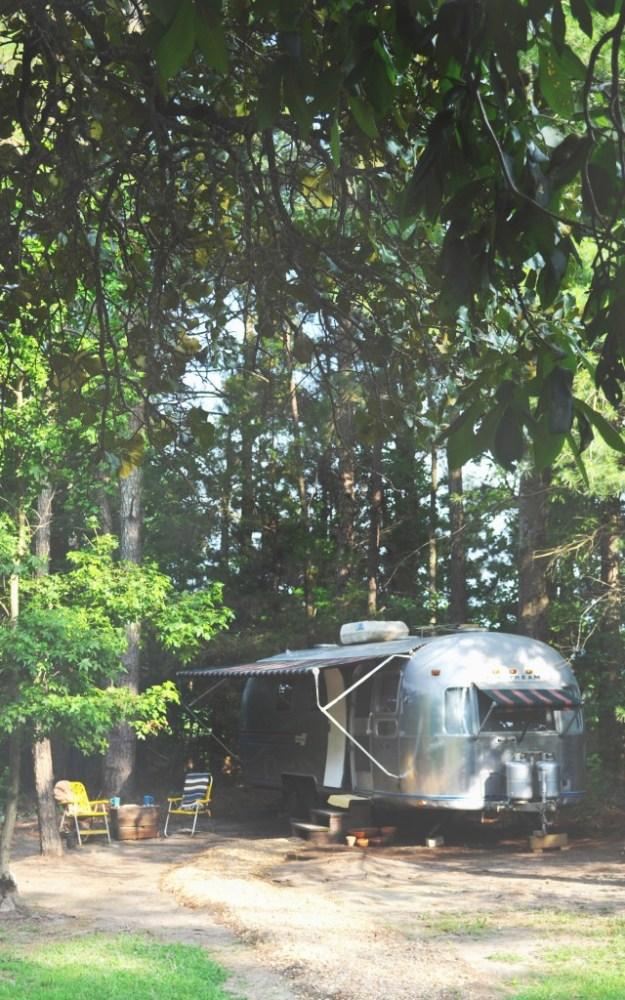 An Airstream through the Leaves copy