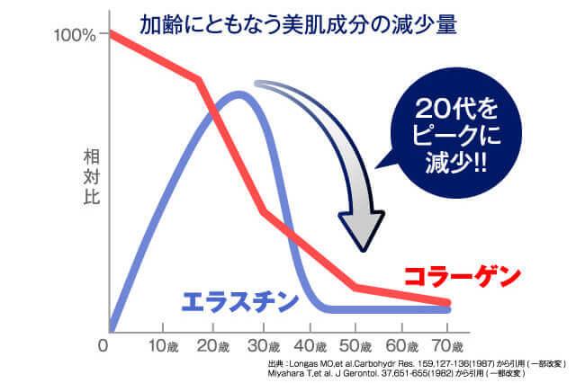 エラスチンとコラーゲンは20代をピークに低下