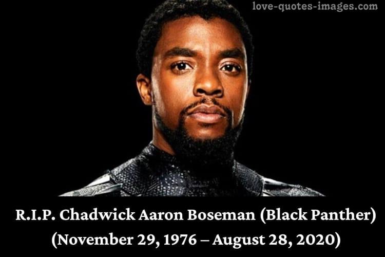 R.I.P. Chadwick Aaron Boseman (Black Panther)