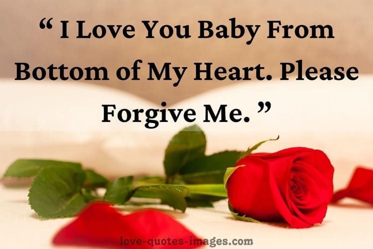 i m sorry quotes