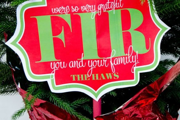 'So Thankful FIR You' FREE Christmas Neighbor Gift Printable by Love The Day