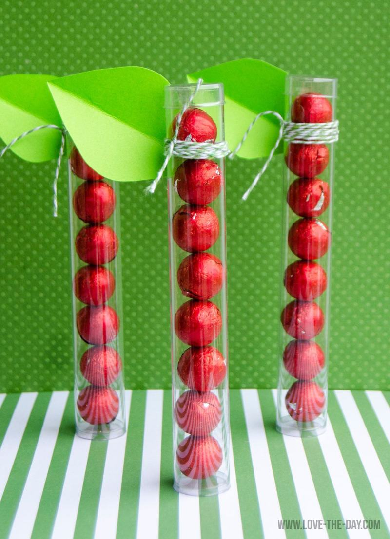 Plastic Tube Apple Craft by Love The Day
