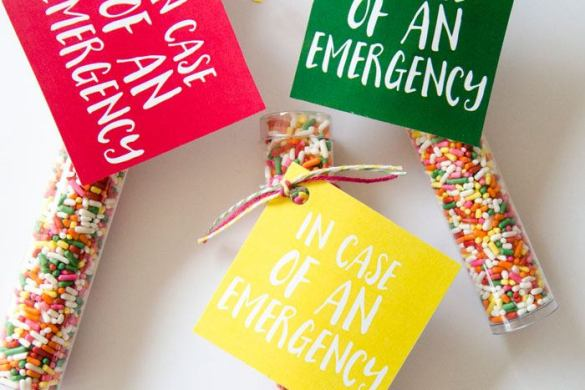 Sprinkles Emergency Preparedness FREE Printable by Love The Day